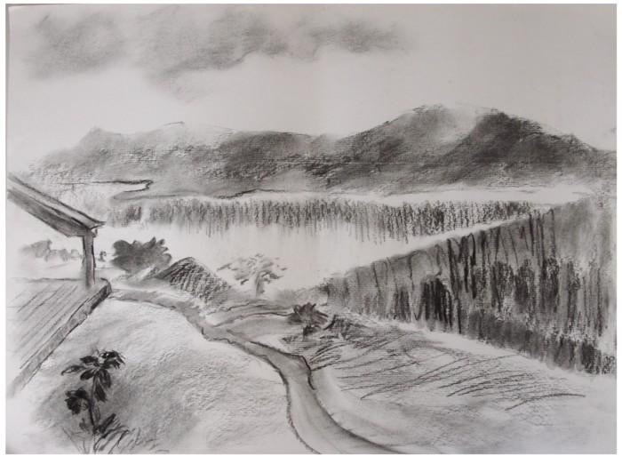 desenho a carvão igaratá