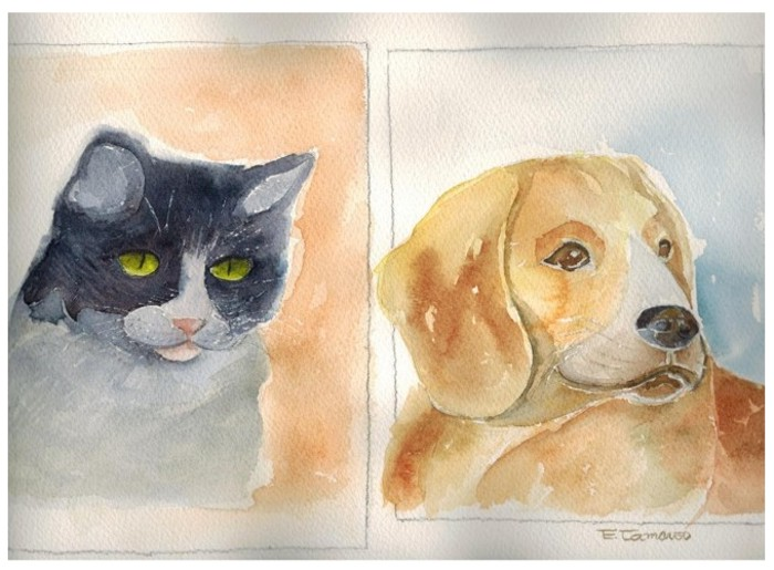 pintura em aquarela gato