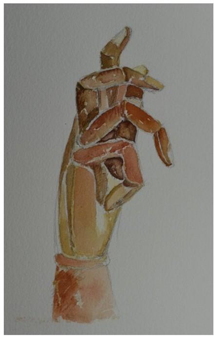 pintura em aquarela mao