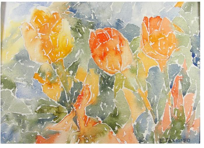pintura em aquarela papoula