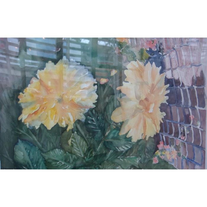 aquarela sao caetano flores